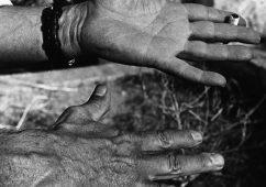 The hands of Picasso c. 1960, Platinum palladium print 50x60cm